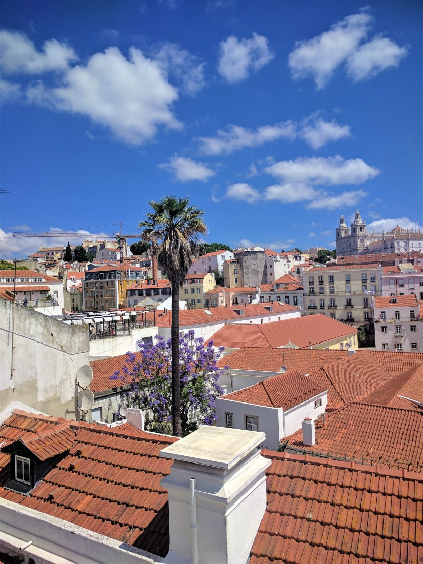 The Lisbon Travel Guide